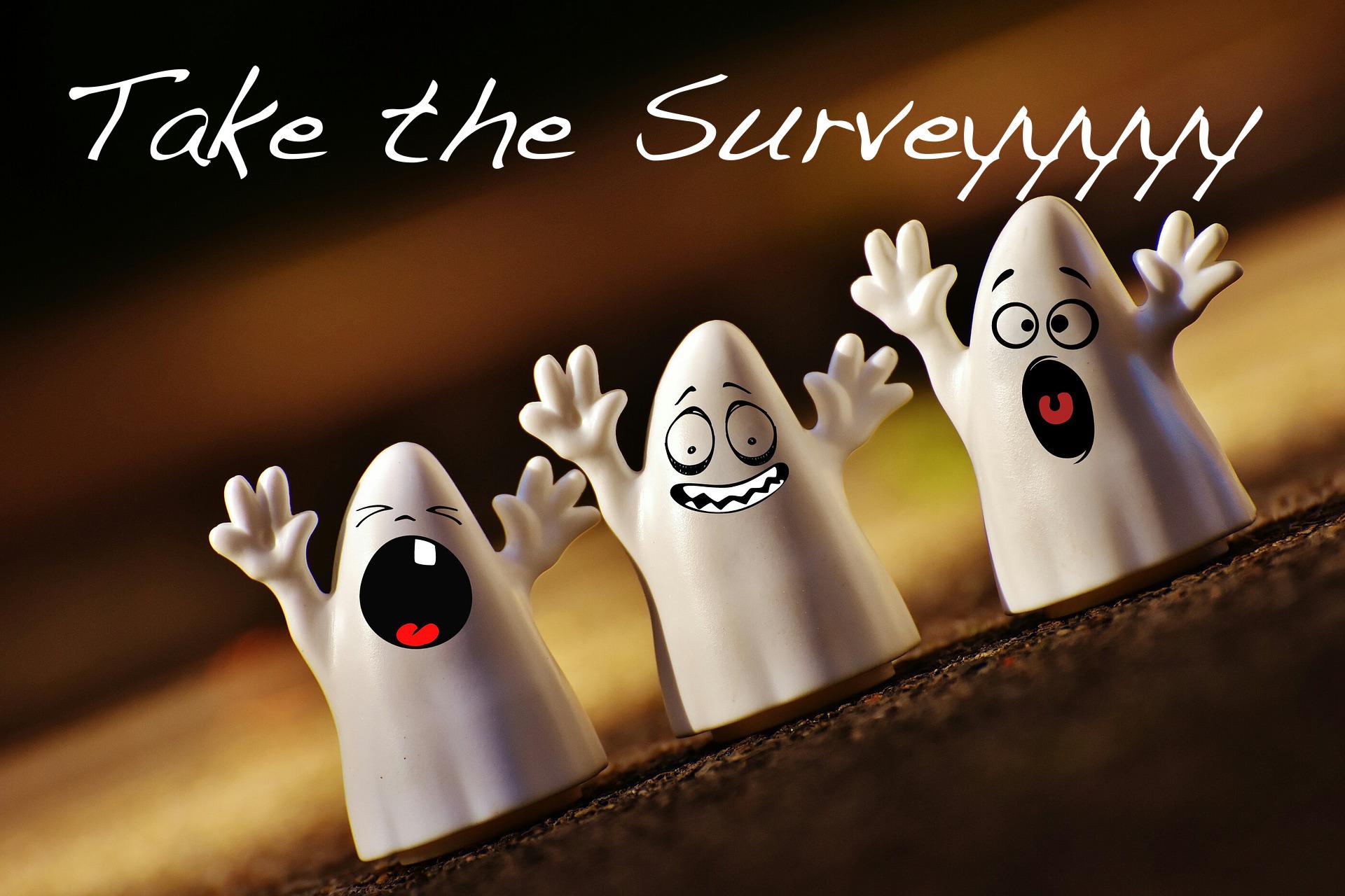 Take the Survey Image